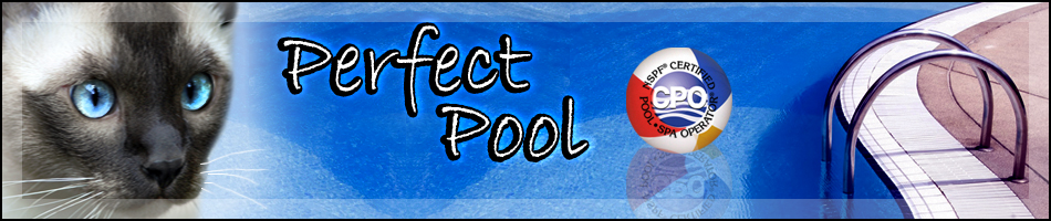 Pool Service In Sarasota Florida Perfect Pool Service